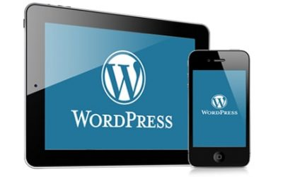 WordPress is the best CMS platform.